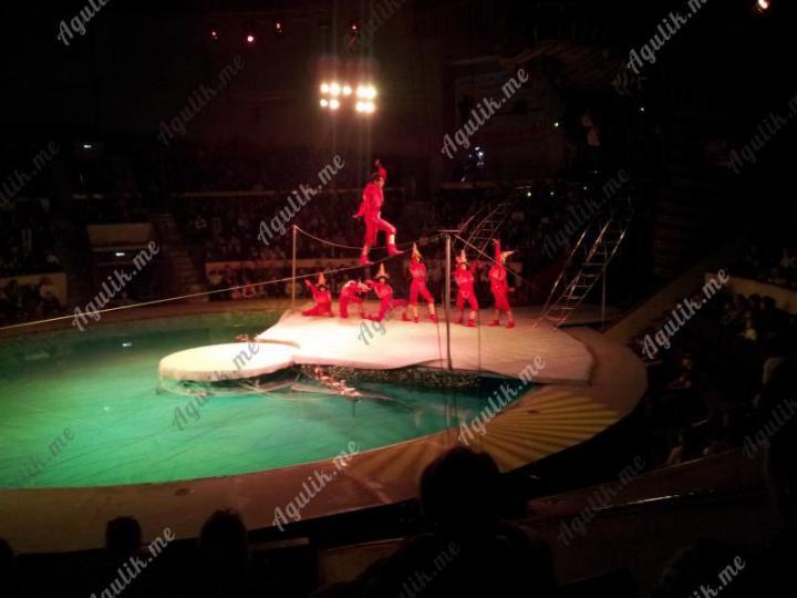 Поход в цирк