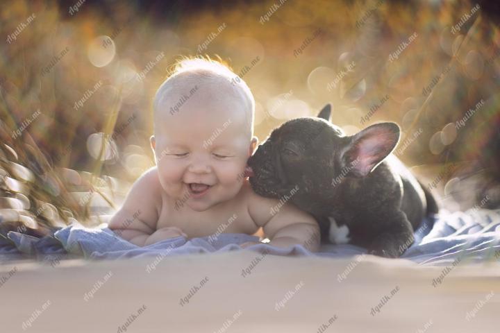 Ребенок и щенок